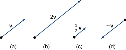 "This graphic has 4 figures. The first figure is a vector labeled ""v."" The second figure is a vector twice as long as the first vector and is labeled ""2 v."" The third figure is half as long as the first and is labeled ""1/2 v."" The fourth figure is a vector in the opposite direction as the first. It is labeled ""-v."""