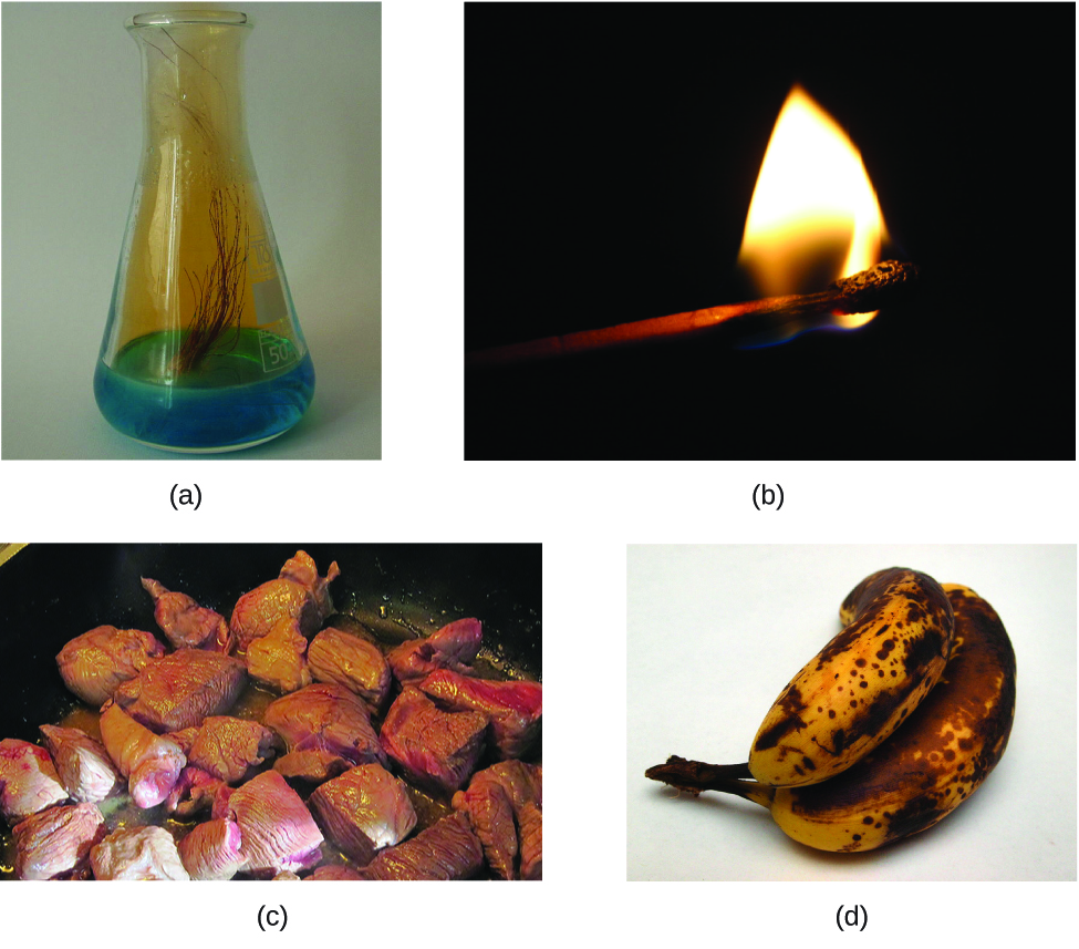 Figure A is a photo of the flask containing a blue liquid. Several strands of brownish copper are immersed into the blue liquid. There is a brownish gas rising from the liquid and filling the upper part of the flask. Figure B shows a burning match. Figure C shows red meat being cooked in a pan. Figure D shows a small bunch of yellow bananas that have many black spots.