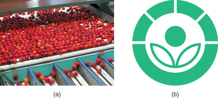A) Peaches on a conveyor belt. B) The symbol for gamma-irradiated. A stylized flower (circle above 2 leaf shapes) inside a circle with 4 clear lines going through the circle near the top.
