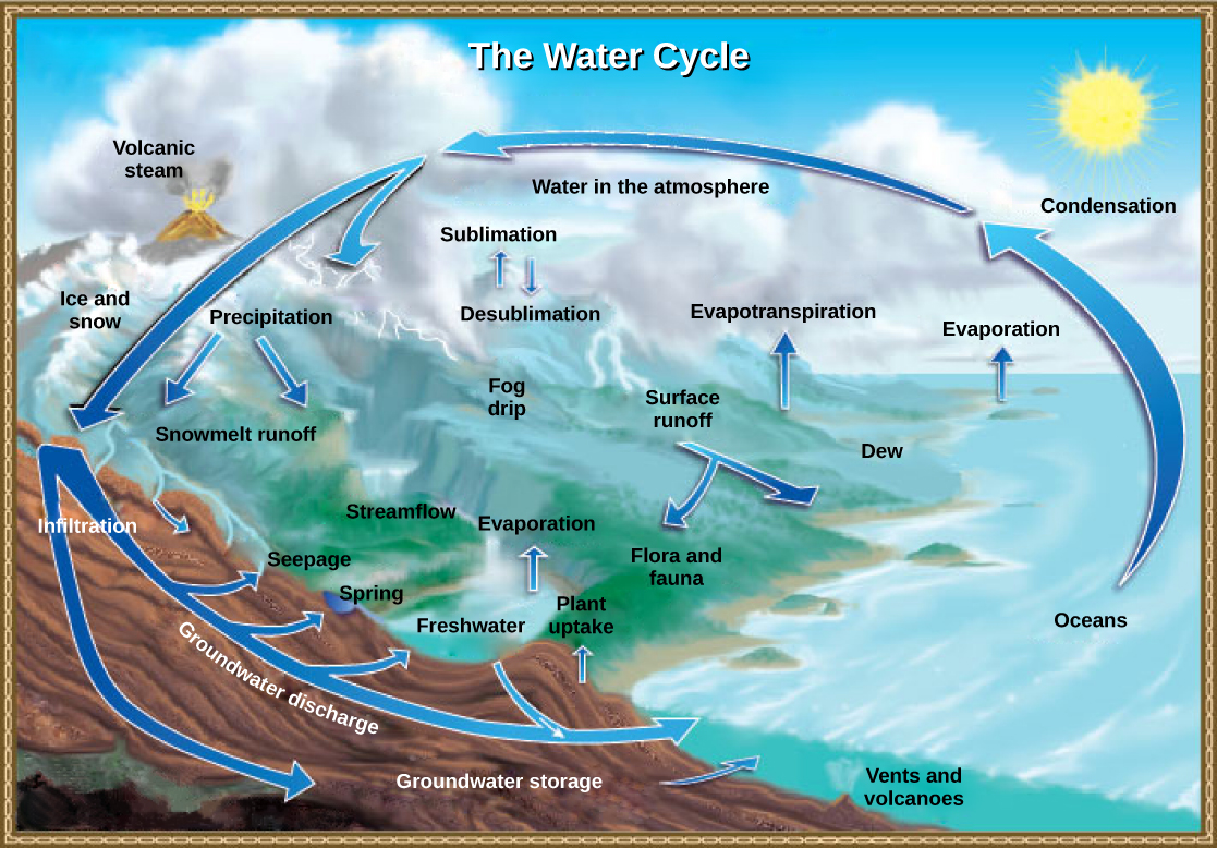 Illustration shows the water cycle. Water enters the atmosphere through evaporation, evapotranspiration, sublimation, and volcanic steam. Condensation in the atmosphere turns water vapor into clouds. Water from the atmosphere returns to the Earth via precipitation or desublimation. Some of this water infiltrates the ground to become groundwater. Seepage, freshwater springs, and plant uptake return some of this water to the surface. The remaining water seeps into the oceans. The remaining surface water enters streams and freshwater lakes, where it eventually enters the ocean via surface runoff. Some water also enters the ocean via underwater vents or volcanoes.