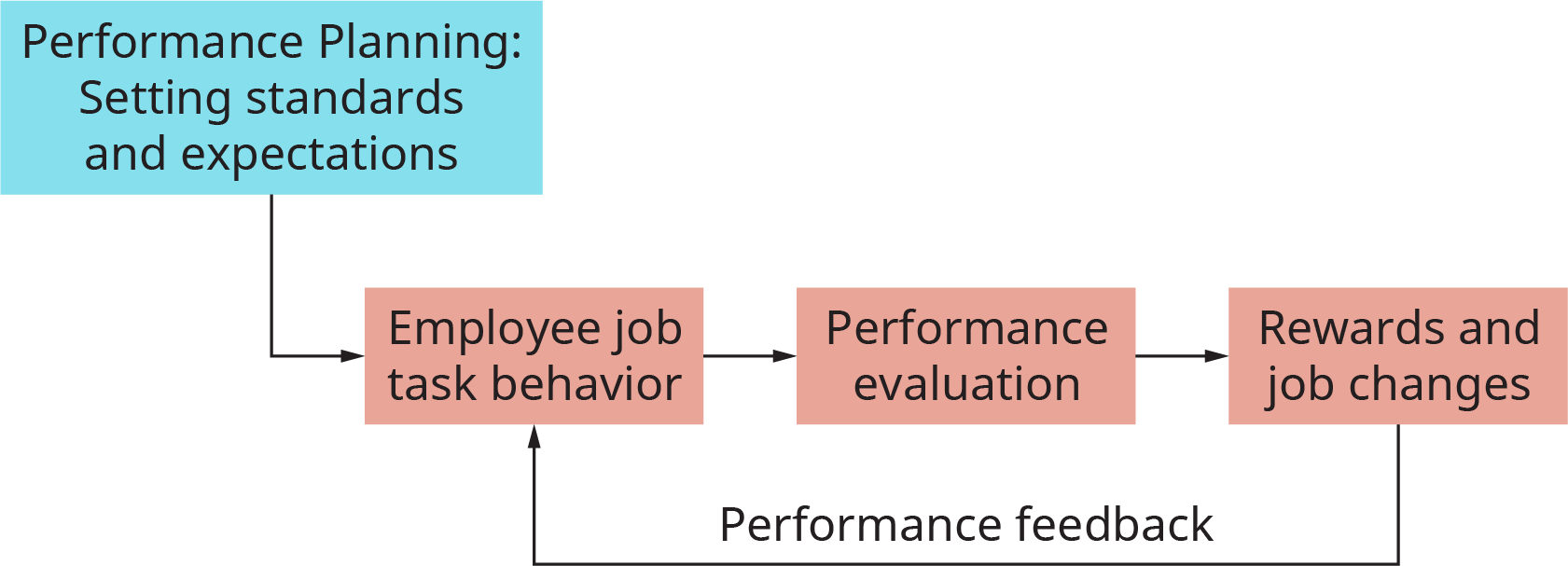 The chart starts with a box labeled performance planning; setting standards and expectations. This flows into employee job task behavior. This flows into performance evaluation. This flows into rewards and job changes. From here, the process flows back to employee job task behavior, and is labeled performance feedback.