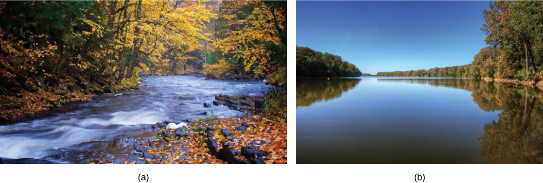 Photo (a) shows a small shallow river in a forest. The water is flowing fast over a rocky bed. Photo (b) shows a wide, slow moving river.