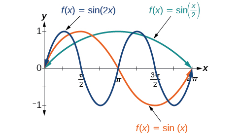 A graph with three items. The x-axis ranges from 0 to 2pi. The y-axis ranges from -1 to 1. The first item is the graph of sin(x) for one full period. The second is the graph of sin(2x) over two periods. The third is the graph of sin(x/2) for one half of a period.