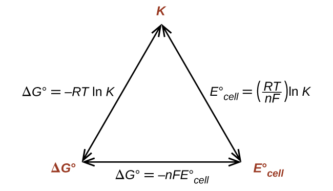 "A diagram is shown that involves three double headed arrows positioned in the shape of an equilateral triangle. The vertices are labeled in red. The top vertex is labeled ""K."" The vertex at the lower left is labeled ""delta G superscript degree symbol."" The vertex at the lower right is labeled ""E superscript degree symbol subscript cell."" The right side of the triangle is labeled ""E superscript degree symbol subscript cell equals ( R T divided by n  F ) l n K."" The lower side of the triangle is labeled ""delta G superscript degree symbol equals negative n F E superscript degree symbol subscript cell."" The left side of the triangle is labeled ""delta G superscript degree symbol equals negative R T l n K."""