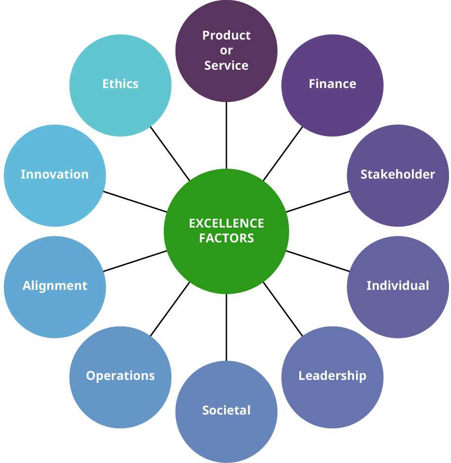 Excellence factors include societal, operations, alignment, innovation, ethics, product/service, finance, stakeholder, individual, and leadership.