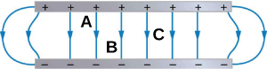 There is a gray long thin rectangle at the top of the figure with black pluses. The same size gray long thin rectangle is at the bottom of the figure with minuses below the positives. There are blue lines with an arrow in the middle connecting each + to each -. The two arrows on the left start at the same first + are curved toward the left and hit the first bottom -. The two lines on the right are curved toward the right and connect the last + and -. The six center arrows are vertical. Between line three and four near the + rectangle is an A. A B is between lines four and five near the – rectangle. C is halfway between the + and – rectangle between lines six and seven.