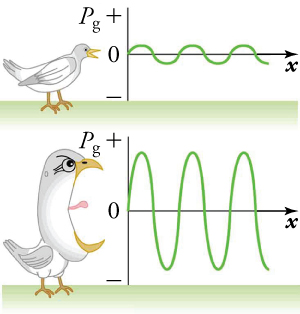 This figure has two panels. In the upper panel, a bird chirping at low volume produces sound waves with small amplitudes. In the lower panel, a bird chirping at high volume produces sound waves with large amplitudes.