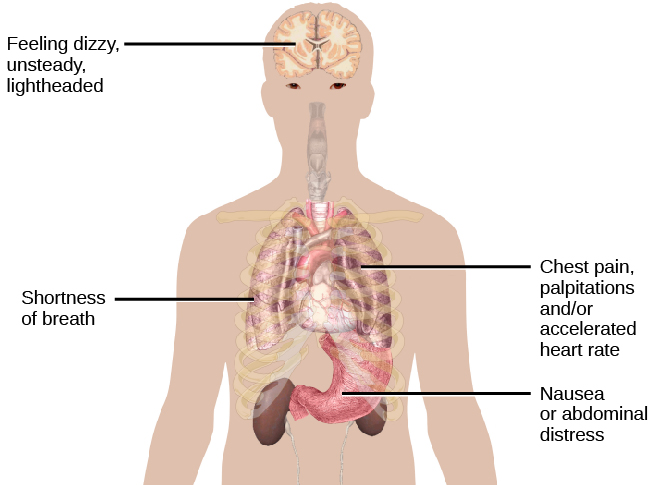 "A diagram shows an outline of a person's upper body. Within this outline, some of the major organs appear. The brain is labeled, ""Feeling dizzy, unsteady, lightheaded."" The heart is labeled, ""Chest pain, palpitations and/or accelerated heart rate."" The lungs are labeled, ""Shortness of breath."" The stomach is labeled, ""Nausea or abdominal distress."""