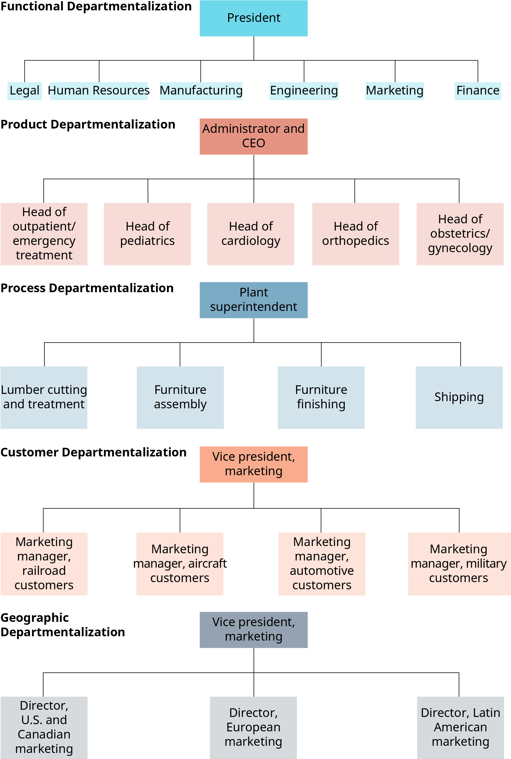 Functional departmentalization shows a president, with lines extending to legal, human resources, manufacturing, engineering, marketing, and finance. Product departmentalization shows an administrator and C E O, with lines extending to head of outpatient slash emergency treatment, head of pediatrics, head of cardiology, head of orthopedics, and head of obstetrics slash gynecology. Process departmentalization shows a plant superintendent with lines extending to lumber cutting and treatment, furniture assembly, furniture finishing, and shipping. Customer departmentalization shows the vice president of marketing, with lines extending to marketing manager, railroad customers; and marketing manager, aircraft customers; and marketing manager, automotive customers, and marketing manager, military customers. Geographic departmentalization shows the vice president of marketing, with lines extending to the director, U S and Canadian marketing; and director, European marketing; and director, Latin American marketing.