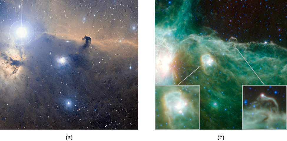 "Visible and Infrared Images of the Horsehead Nebula in Orion. At left, (a) is a visible light image of the ""horsehead"", with the very bright star Zeta Orionis at upper left. The horsehead shape is seen silhouetted against the bright red nebulous background in the upper half of the image. Fainter swirls of gas and dark dust are seen in the lower half. At right, (b) is an infrared image of the same region. The infrared image is a near reversal of the visible image. The bright star is barely seen. The horsehead is now a bright shape against a dark background, and the lower half of the image is bright with wisps and swirls of gas and a bright star forming nebula near the center. The insets in the infrared image show the horsehead and the bright nebula in more detail."