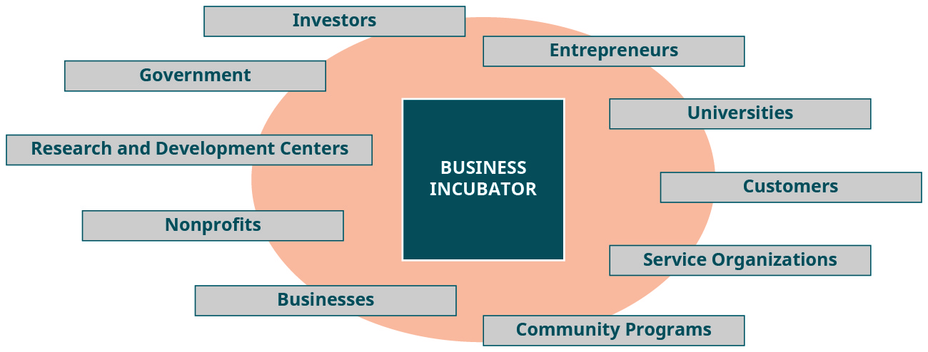 "A diagram labeled ""business incubator"" lists potential contributors: investors, government, research and development centers, nonprofits, businesses, entrepreneurs, universities, customers, service organizations, and community programs."