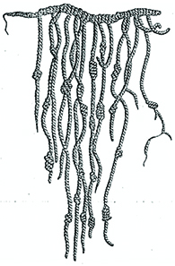 An Inca quipu is shown, a string with a number of thinner, knotted strings dangling from it.