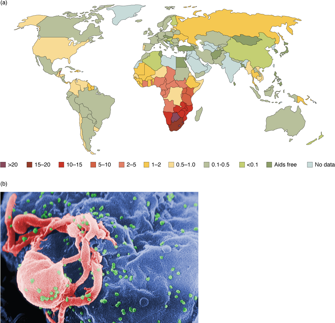 The top panel shows a color-coded world map. The bottom panel shows many viruses on a cell.
