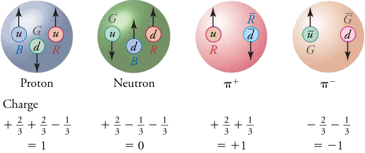 There are four pictures in this figure, each showing the structure of a hadron. The proton on the left is composed of three quarks (two up and one down). The colors of the quarks are blue, green, and red. The second picture is of a neutron, which is composed of three quarks (one up and two down). The colors of its quarks are green, blue, and red. The third image is of a positive pion, which is composed of two quarks (up and anti-down). The colors of its quarks are red and anti-red. The final picture is of a negative pion, which is composed of two quarks (anti-up and down). The colors of its quarks are green and anti-green. Underneath each quark is a summation of the quarks fractional charge. The summation of quark charges for both the proton and positive pion is +1. The summation of quark charges for the neutron is zero. The summation of quark charges for the negative pion is -1.