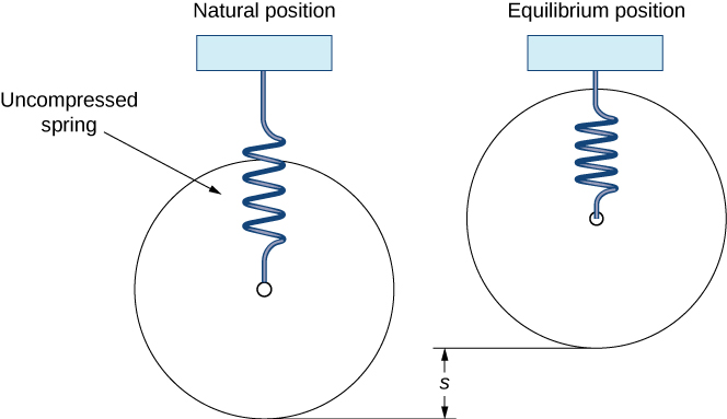 "This figure has two springs attached above at a fixed point. The first spring is labeled, ""Natural Position,"" and has an uncompressed spring hanging vertically. The second spring is labeled, ""Equilibrium Position,"" and has a compressed spring hanging vertically. The vertical difference between the two springs is labeled, ""s."""