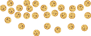 An image of 28 cookies placed at random.