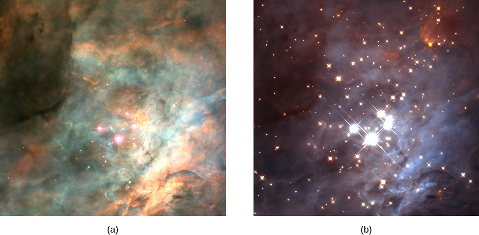 The Central Region of the Orion Nebula in visible and infrared light. Figure a, on the left, shows the Trapezium cluster of stars and the surrounding nebulosity. The four brightest stars of the Trapezium, plus a few others, are seen embedded in clouds of gas and dust. Figure b, on the right, shows the same field in infrared wavelengths. Many more stars are seen because infrared light penetrates the dust in the nebula.