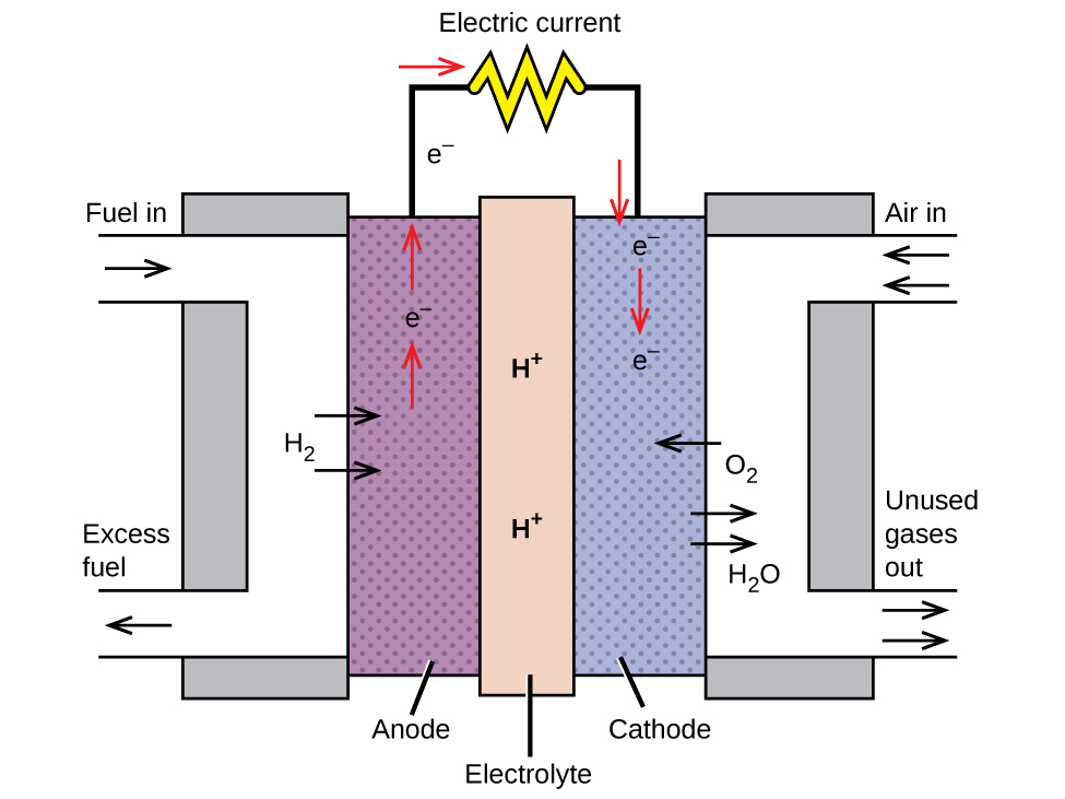 "A diagram is shown of a hydrogen fuel cell. At the center is a vertical rectangle which is shaded dark gray and labeled ""Electrolyte."" This region has two labels for H superscript plus in it. To the right and left are narrow vertical rectangles shaded light gray. The one to the right is labeled ""Cathode"" and the one to the left is labeled ""Anode."" To the left of the left-most light gray region is a white region shaped like a closed left bracket. A yellow arrow points in to the white region with the label to show ""Fuel In."" In the middle of the white area are two yellow arrows pointing toward the gray shading labeled ""H subscript 2."" At the bottom of the white region is a yellow arrow pointing out that is labeled ""Excess Fuel."" On the right side is another white region that makes a right closed bracket shape. There are two arrows with the label ""Air In"" and ""H subscript 2 O"" in the upper left side of this area pointing in. One arrow is light blue and one is dark blue. In the middle to the white area is a light blue arrow pointing toward the gray shading. The arrow is labeled ""O subscript 2."" Below that are two dark blue arrows pointing out from the gray shading to the white area labeled ""H subscript 2 O."" At the bottom of the white region are the light blue arrow for O subscript 2 and the dark blue arrow for H subscript 2 O pointing out. This is labeled ""Unused Gases Out."" Black line segments extend upward from the light gray shaded regions. These line segments are connected by a horizontal segment that has a curly shape in a circle at the center. This shape is labeled ""Electric Current."" In the left light gray shaded region above the yellow arrows is a red arrow pointing up, the label e superscript minus above it, and then another red arrow. The black line segment above this area also has the label e superscript minus. Where the line turns right to connect to the Electric Current shape is a right-facing red arrow. On the other side of the shape where the line turns downward to connect to the other light gray shaded region is a red downward-facing arrow. Below that arrow in the light gray region is the label e superscript minus, followed by a red down arrow, followed by another e superscript minus label that stops before the light blue arrow pointing in to the shaded area."
