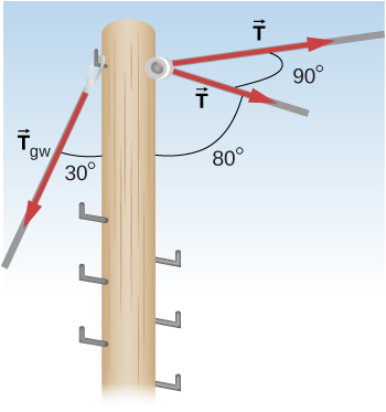 Figure shows a pole to which two forces T and force Tgw are applied. There is a 90 degree angle between two T forces. There is an 80 degree angle between the plane T forces are applied anf the pole. There is a 30 degree angle between Tgw and the pole.