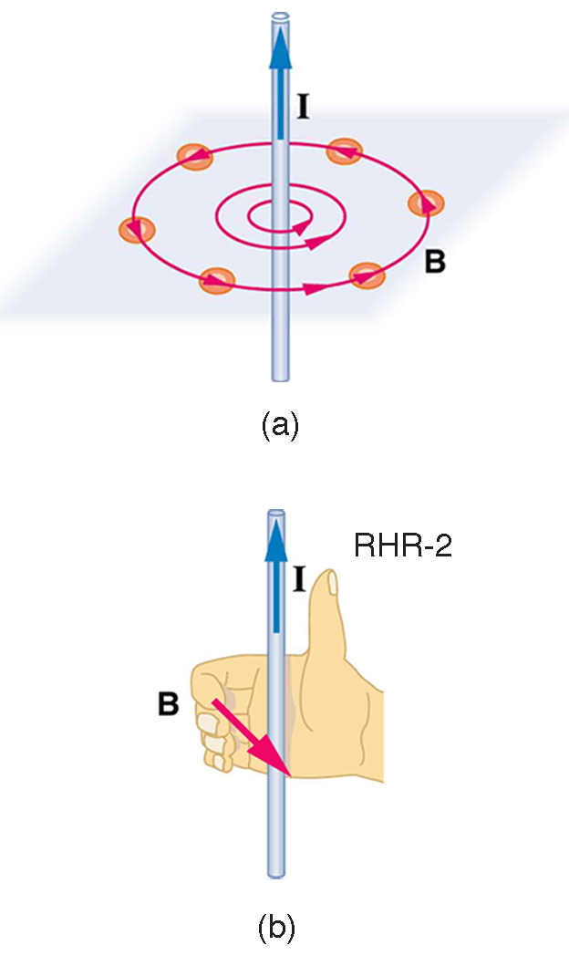 Figure a shows a vertically oriented wire with current I running from bottom to top. Magnetic field lines circle the wire counter-clockwise as view from the top. Figure b illustrates the right hand rule 2. The thumb points up with current I. The fingers curl around counterclockwise as viewed from the top.