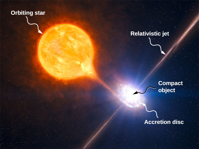 An illustration of the accretion from an orbiting star by a compact object. A large star is shown near a small compact object. Luminous matter is shown being pulled from the star and into a spiral, labeled Accretion disc, circling the compact object. A bright line perpendicular to the disc extends from the center of the compact object, above and below, and is labeled relativistic jet.