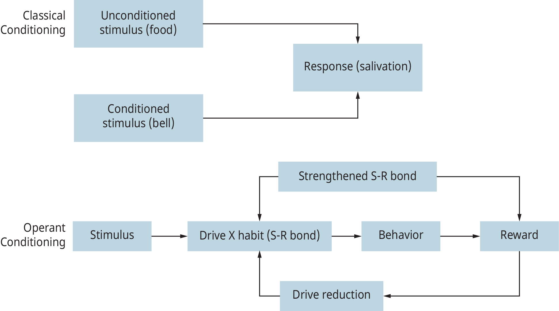"A set of two flowcharts are shown to depict the functioning of ""Classical Conditioning"" and ""Operant Conditioning."""