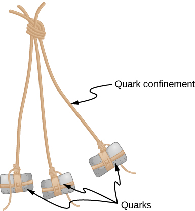 Three strings are tied together at one end. A weight is attached to the other end of each. The strings are labeled quark confinement. The weights are labeled quarks.