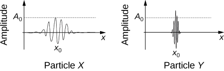 Wave functions for two different particles are graphically compared. The graph for particle X shows a lower amplitude and a broader spatial distribution compared to the graph for particle Y, which shows a higher amplitude and narrower spatial distribution.
