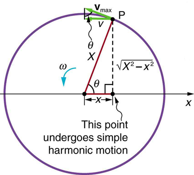 The figure shows a point P moving through the circumference of a circle in an angular way with angular velocity omega. The diameter is projected along the x axis, with point P making an angle theta at the centre of the circle. A point along the diameter shows the projection of the point P with a dotted perpendicular line from P to this point, the projection of the point is given as v along the circle and its velocity v subscript max, over the top of the projection arrow in an upward left direction.