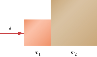 Two squares are shown side by side, touching each other. The left one is smaller and is labeled m1. The one on the right is bigger and is labeled m2. Force F acts on m1 from left to right.