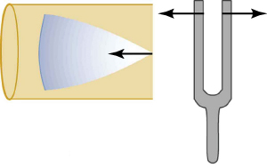The vibration from a tuning fork sends a wave disturbance through the air down the tube.