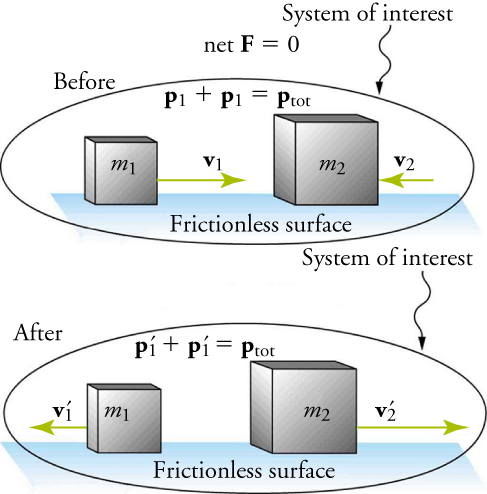 An illustration shows before and after diagrams of two boxes moving toward each other on a frictionless surface. The box on the left is labeled m one and the box on the right is labeled m two. Both diagrams are labeled System of Interest. In the before diagram, a velocity vector, v one, points from m one toward m two. A second, shorter velocity vector, v two, points from the left side of m two toward m one. Two equations are shown: p one plus p one equals p total and net F equals zero. In the after diagram, both velocity vectors point away from each mass, m one and m two. The vector on the left is shorter than the one on the right. The equation p one prime plus p one prime equals p total is shown.