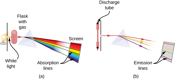 Figures A and B show the schematics of an experimental setup to observe absorption lines. In Figure A, white light passes through the prism and gets separated into the wavelengths. In the spectrum of the passed light, some wavelengths are missing, which are seen as black absorption lines in the continuous spectrum on the viewing screen. In Figure B, light emitted by the gas in the discharge tube passes through the prism and gets separated into the wavelengths. In the spectrum of the passed light, only specific wavelengths are present, which are seen as colorful emission lines on the screen.