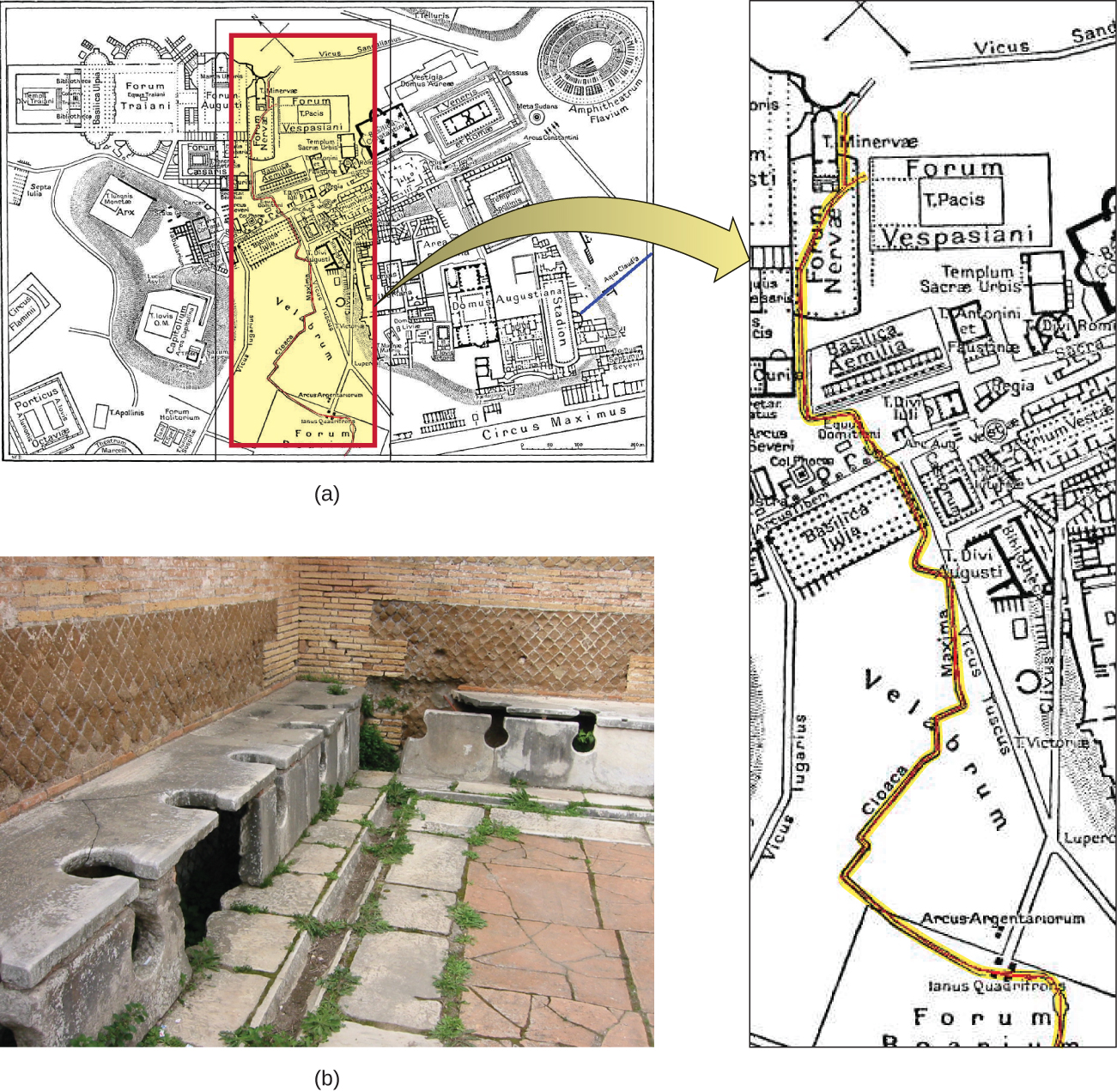 Figure a is a map of a city containing a stadium, forum, and other structures. Running through the center of the city is a red line. Figure b is a photograph of a corner of a room. There is a trough between the walls and the floor. This trough is covered with stone benches that have large holes (as for a toilet) in the bench. The holes span the top and front of the bench. There are six holes visible in the bench that runs along one side of the image and two more in the bench along the other side. The image does not show the entire room so there are likely more available spots in this room.
