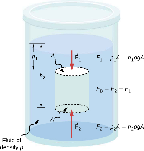 Figure is a schematic drawing of the cylinder filled with fluid and opened to the atmosphere on one side. An imaginary object with the surface area A, that is smaller than the surface area of the cylinder, is submerged into the fluid. Distance between the top of the fluid and the top of the object is h1. Distance between the top of the fluid and the bottom of the object is h2. Forces F1 and F2 are applied to the top and the bottom of the object, respectively.