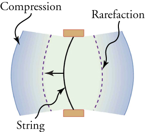 A string bulges to the left, creating compression ahead of it and rarefaction behind it.