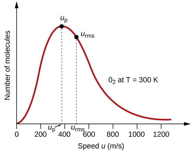 "A graph is shown. The horizontal axis is labeled, ""Speed u ( m divided by s )."" This axis is marked by increments of 20 beginning at 0 and extending up to 120. The vertical axis is labeled, ""Fraction of molecules."" A positively or right-skewed curve is shown in red which begins at the origin and approaches the horizontal axis around 120 m per s. At the peak of the curve, a point is indicated with a black dot and is labeled, ""v subscript p."" A vertical dashed line extends from this point to the horizontal axis at which point the intersection is labeled, ""v subscript p."" Slightly to the right of the peak a second black dot is placed on the curve. This point is labeled, ""v subscript r m s."" A vertical dashed line extends from this point to the horizontal axis at which point the intersection is labeled, ""v subscript r m s."" The label, ""O subscript 2 at T equals 300 K"" appears in the open space to the right of the curve."