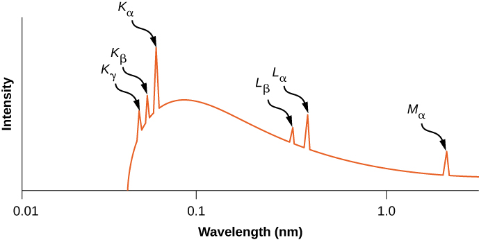 A graph of X-ray intensity versus wavelength in nanometers is shown. The wavelength scale is logarithmic and its range is 0.01 nanometers to just past 1.0 nanometers. The curve starts from a point a little more than half way between 0.01 and 0.1 n m and increases. Before the frequency attains its maximum value at approximately 0.1 n m, three sharp peaks, labeled K sub alpha, K sub gamma, and K sub alpha are formed, after which the X-ray intensity decreases gradually. Two sharp peaks are seen about half way between 0.1 and 1.0, labeled L sub beta and L sub alpha. Another peak, at a wavelength longer than 1.0 n m, is labeled M sub alpha.