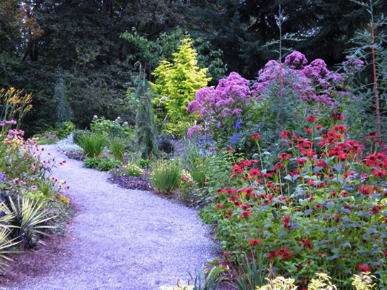 Photo shows a winding pathway bordered by flowers in a variety of colors and shapes.