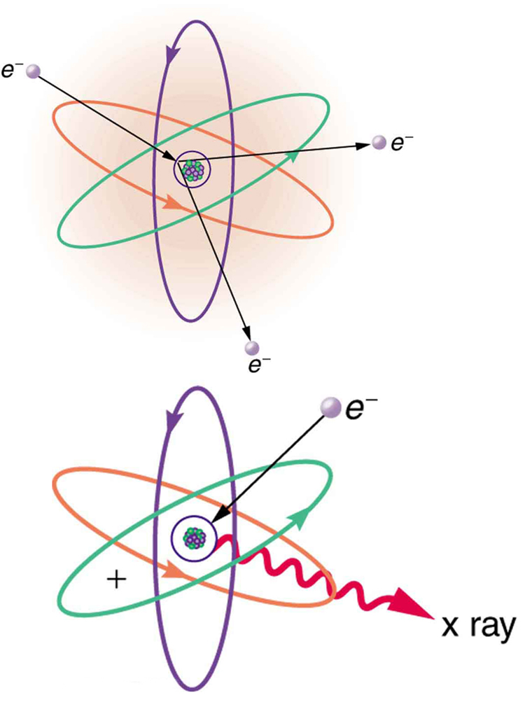 An atom is shown. The nucleus is in the center as a cluster of small spheres packed together. Four electron orbits are shown around the nucleus. The one close to the nucleus is circular. All the other orbits are elliptical in nature and inclined at various angles. An electron, represented as a tiny sphere, is shown to strike the atom. An electron is shown knocked out from the closest orbit. A second image of the same atom illustrates another electron striking innermost orbit; a wavy red arrow representing an x ray is shooting away from the innermost orbit.