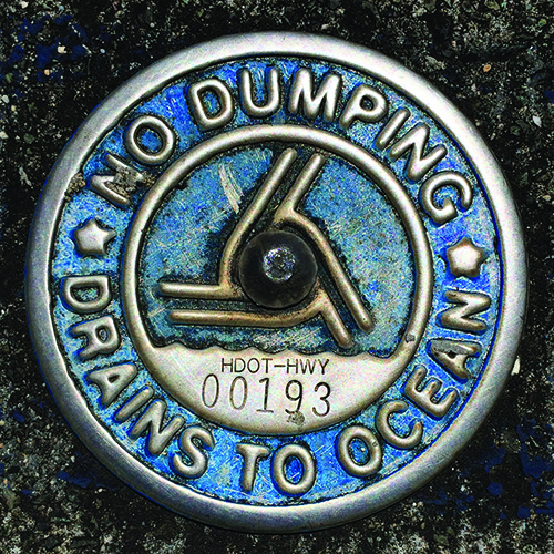 "A sign that reads ""No Dumping, Drains to Ocean""."