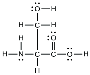 A Lewis structure is shown. A nitrogen atom is single bonded to two hydrogen atoms and a carbon atom. The carbon atom is single bonded to a hydrogen atom and two other carbon atoms. One of these carbon atoms is single bonded to two hydrogen atoms and an oxygen atom. The oxygen atom is bonded to a hydrogen atom. The other carbon is single bonded to two oxygen atoms, one of which is bonded to a hydrogen atom. The oxygen atoms have two lone pairs of electron dots, and the nitrogen atom has one lone pair of electron dots.