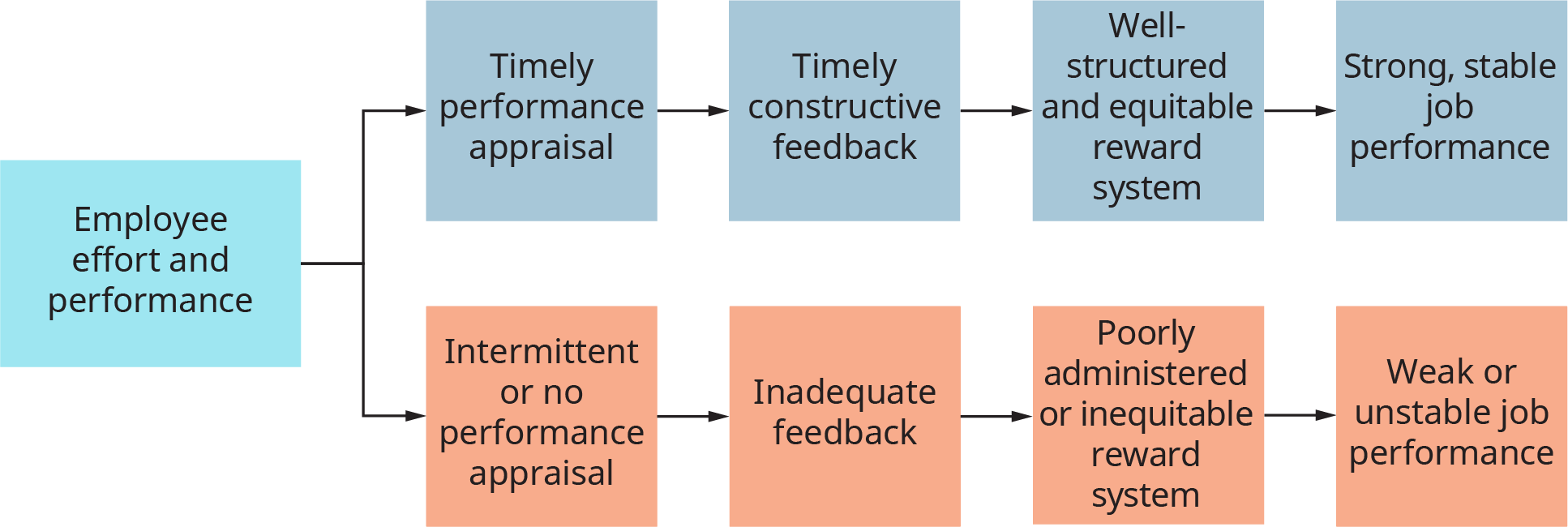 A diagram illustrates the positive and negative consequences of performance appraisal and reward process.