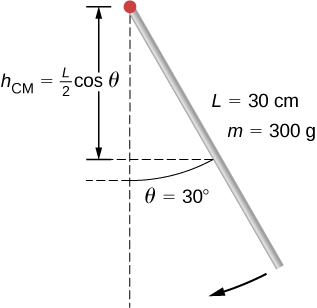 Figure shows a pendulum in the form of a rod with a mass of 300 grams and length of 30 centimeters. Pendulum is released from rest at an angle of 30 degrees.