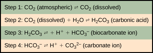 In step 1, atmospheric carbon dioxide dissolves in water. In step 2 dissolved carbon dioxide, which is written as upper case C upper case O subscript 2 baseline, reacts with water, written as upper case H subscript 2 baseline upper case O, to form carbonic acid which is upper H subscript 2 baseline upper C upper O subscript 3 baseline. In step 3, carbonic acid dissociates into a proton, shown as upper case H plus sign, and a bicarbonate ion, shown as upper H upper C upper O subscript 3 negative. In step 4 the bicarbonate ion dissociates into another proton and a carbonate ion, shown as upper C upper O subscript 3 baseline superscript two negative.