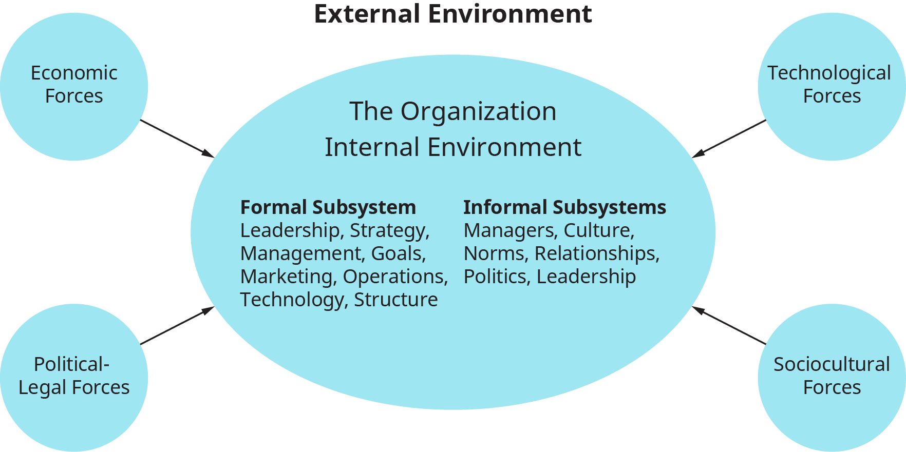 A diagram shows the subsystems of the internal environment of an organization and the external forces affecting it.