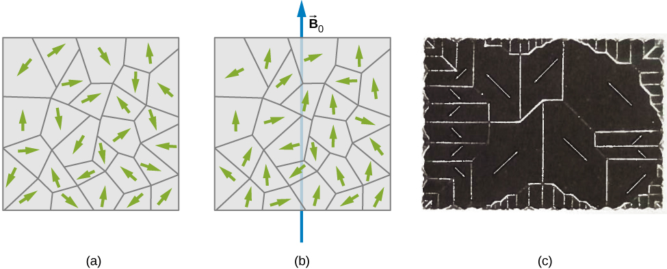 Picture a shows small randomly oriented domains in the unmagnetized piece of the ferromagnetic sample. Picture b shows small partially aligned domains upon the application of a magnetic field. Figure c shows domains of a single crystal of nickel. Clear domain boundaries are visible.
