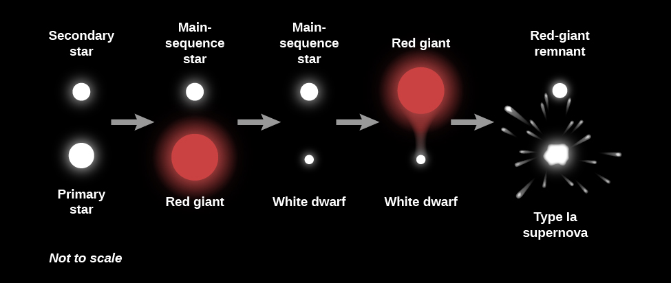 "Illustration of the Evolution of a Binary System. From left to right the ""Primary star"" is at bottom drawn as a large white circle. The ""Secondary star"" is at top as a smaller white circle. A grey arrow points to the right to the next phase. The primary has evolved into a ""Red giant"", drawn as a large red circle, and the secondary remains a ""Main-sequence star"". A grey arrow points to the right to the next phase. The primary has evolved into a ""White dwarf"", drawn as a white dot, and the secondary remains a ""Main-sequence star"". A grey arrow points to the right to the next phase. The primary remains a ""White dwarf"" while the secondary has evolved a ""Red giant"", drawn as a large red circle with material flowing toward the white dwarf. A grey arrow points to the right to the final phase. The primary has exploded as a ""Type Ia supernova"", drawn as a white blob with debris streaming outward, and the secondary has evolved into a ""Red-giant remnant""."