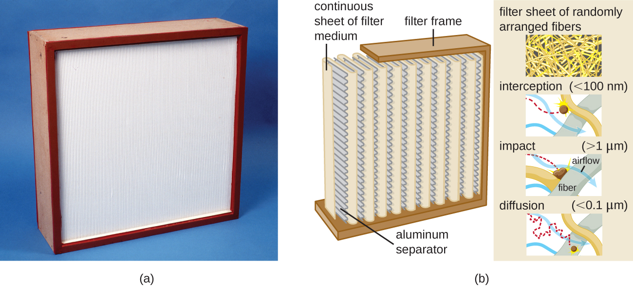 a) A large square with a white center. B) a diagram of the filter showing that the white center is made of a continuous sheet of filter medium separated by aluminum separators. A diagram showing the filter sheet of randomly arranged fibers. Interception (<100 nm) wi shen the particle hits a fiber. Impact (>1um) is when the particle becomes wedged between fibers. Diffusion (<0.01) is when the particle moves between the fibers.