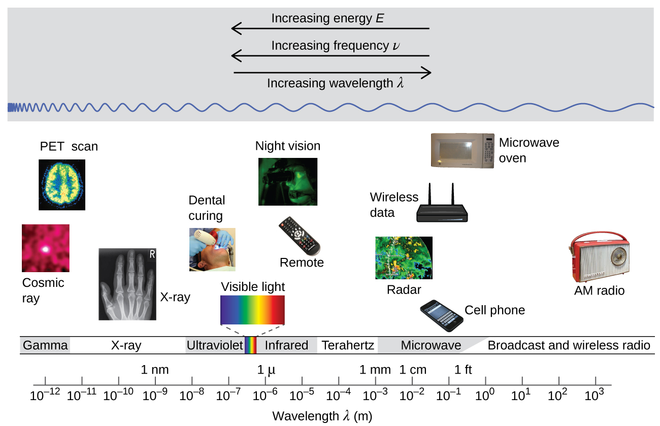 "The figure includes a portion of the electromagnetic spectrum which extends from gamma radiation at the far left through x-ray, ultraviolet, visible, infrared, terahertz, and microwave to broadcast and wireless radio at the far right. At the top of the figure, inside a grey box, are three arrows. The first points left and is labeled, ""Increasing energy E."" A second arrow is placed just below the first which also points left and is labeled, ""Increasing frequency nu."" A third arrow is placed just below which points right and is labeled, ""Increasing wavelength lambda."" Inside the grey box near the bottom is a blue sinusoidal wave pattern that moves horizontally through the box. At the far left end, the waves are short and tightly packed. They gradually lengthen moving left to right across the figure, resulting in significantly longer waves at the right end of the diagram. Beneath the grey box are a variety of photos aligned above the names of the radiation types and a numerical scale that is labeled, ""Wavelength lambda ( m )."" This scale runs from 10 superscript negative 12 meters under gamma radiation increasing by powers of ten to a value of 10 superscript 3 meters at the far right under broadcast and wireless radio. X-ray appears around 10 superscript negative 10 meters, ultraviolet appears in the 10 superscript negative 8 to 10 superscript negative 7 range, visible light appears between 10 superscript negative 7 and 10 superscript negative 6, infrared appears in the 10 superscript negative 6 to 10 superscript negative 5 range, teraherz appears in the 10 superscript negative 4 to 10 superscript negative 3 range, microwave infrared appears in the 10 superscript negative 2 to 10 superscript negative 1 range, and broadcast and wireless radio extend from 10 to 10 superscript 3 meters. Labels above the scale are placed to indicate 1 n m at 10 superscript negative 9 meters, 1 micron at 10 superscript negative 6 meters, 1 millimeter at 10 superscript negative 3 meters, 1 centimeter at 10 superscript negative 2 meters, and 1 foot between 10 superscript negative 1 meter and 10 superscript 0 meters. A variety of images are placed beneath the grey box and above the scale in the figure to provide examples of related applications that use the electromagnetic radiation in the range of the scale beneath each image. The photos on the left above gamma radiation show cosmic rays and a multicolor PET scan image of a brain. A black and white x-ray image of a hand appears above x-rays. An image of a patient undergoing dental work, with a blue light being directed into the patient's mouth is labeled, ""dental curing,"" and is shown above ultraviolet radiation. Between the ultraviolet and infrared labels is a narrow band of violet, indigo, blue, green, yellow, orange, and red colors in narrow, vertical strips. From this narrow band, two dashed lines extend a short distance above to the left and right of an image of the visible spectrum. The image, which is labeled, ""visible light,"" is just a broader version of the narrow bands of color in the label area. Above infrared are images of a television remote and a black and green night vision image. At the left end of the microwave region, a satellite radar image is shown. Just right of this and still above the microwave region are images of a cell phone, a wireless router that is labeled, ""wireless data,"" and a microwave oven. Above broadcast and wireless radio are two images. The left most image is a black and white medical ultrasound image. A wireless AM radio is positioned at the far right in the image, also above broadcast and wireless radio."